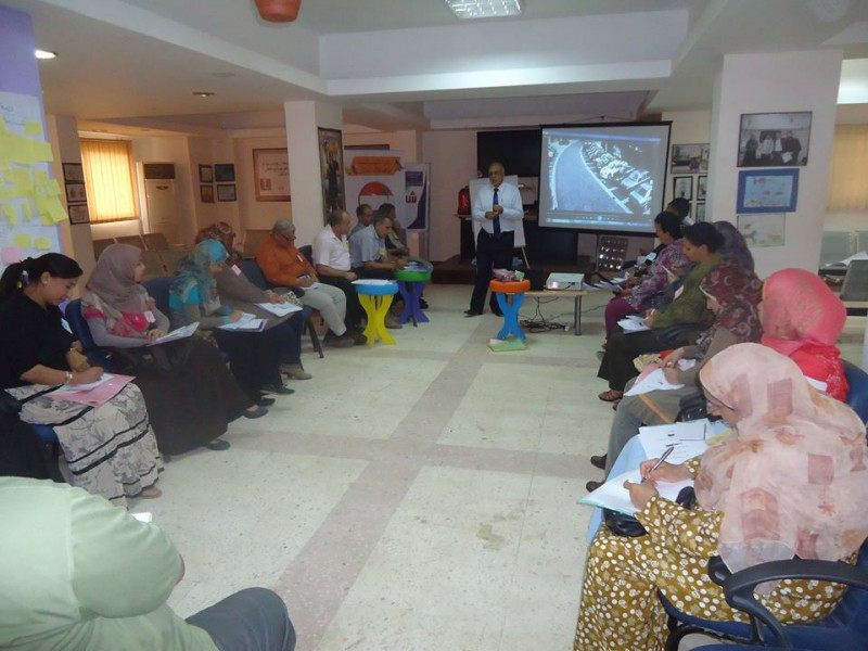 Professional development training in Tala - Menofia